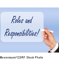 Balancing Roles and Responsibilities in Six Sigma