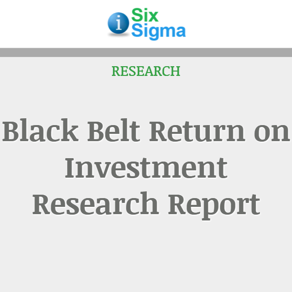 Black Belt Return on Investment Research Report