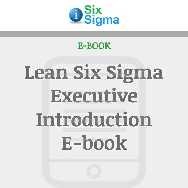 Lean Six Sigma Executive Introduction E-book