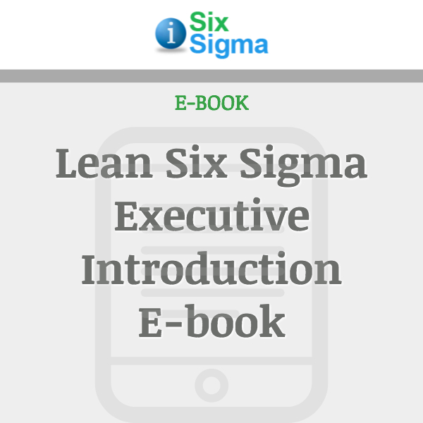 Lean Six Sigma Executive Introduction E-book