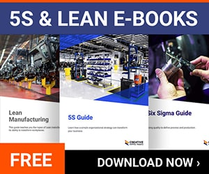 Download 5S, Lean & Six Sigma eBooks
