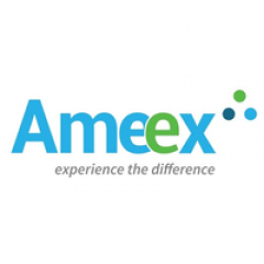 Profile picture of Ameex Technologies