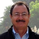 Profile picture of Mario Perez-Wilson